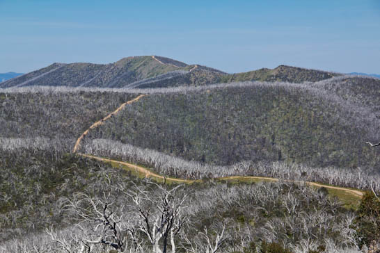4WD Tracks im Victorian High Country
