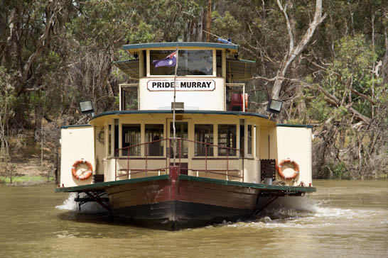 Schaufelraddampfer Pride of the Murray in Echuca